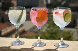 Gin Tonicas YVY capa
