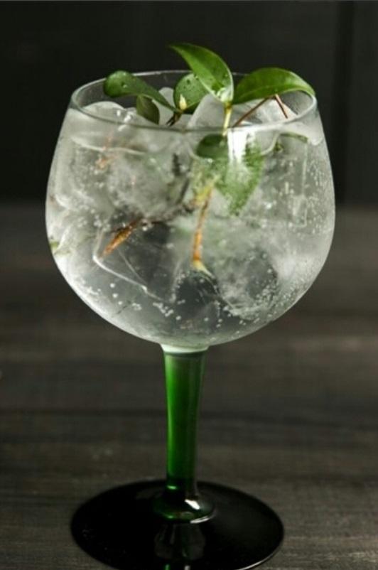Gin Tonic Bar.